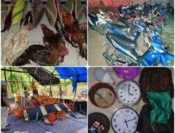 Polsek Tanjung Bintang, Grebek Judi Sabung Ayam di Tengah Kebun Karet